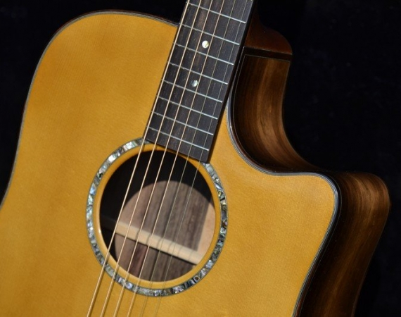 Custom DREADNOUGHT with Cutaway main image